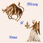 мужчина Телец и женщина Дева