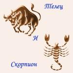 мужчина Телец и женщина Скорпион