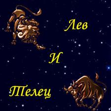 мужчина лев и женщина телец