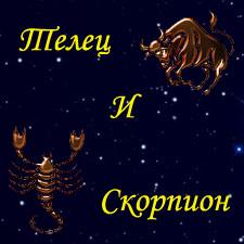 женщина Телец и мужчина Скорпион
