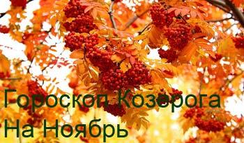 козерог-ноябрь