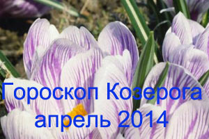 Гороскоп Козерога на апрель 2014 года