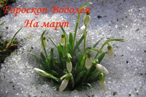 март-водолей