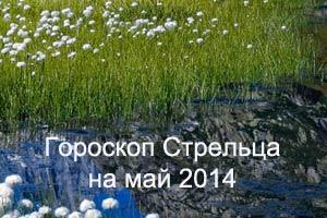 гороскоп Стрельца на май 2014