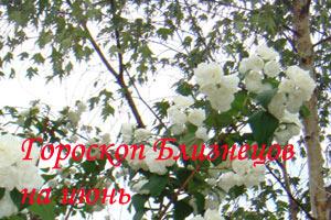 гороскоп близнецов на июнь 2014