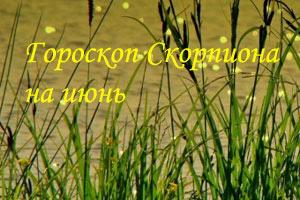 гороскоп скорпиона на июнь 2014